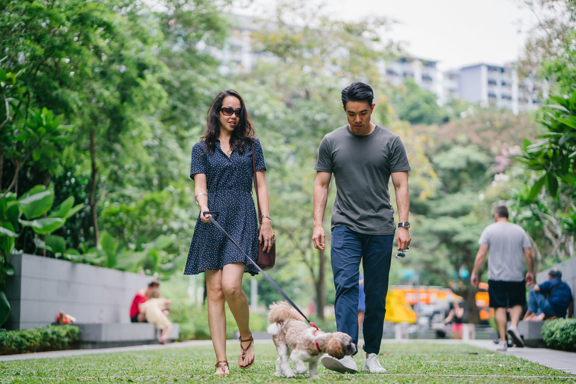 man in gray crew neck t shirt walking beside woman in black v neck dress